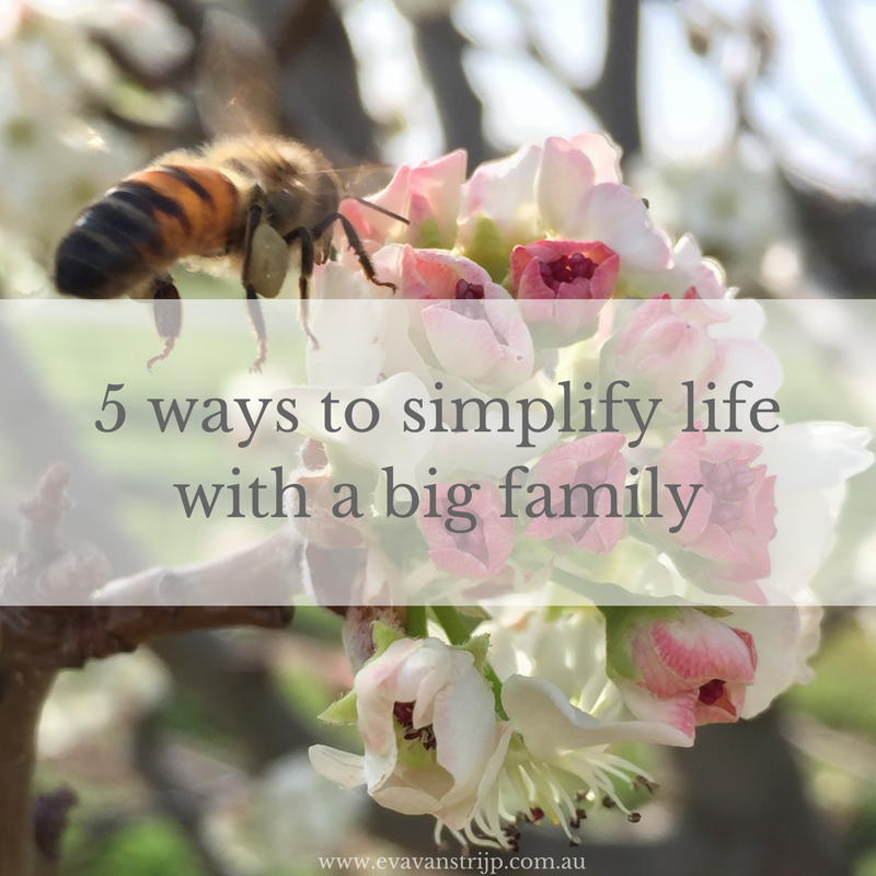 5 Ways to Simplify Life with a Big Family: Simplicity Hacks for Large Families