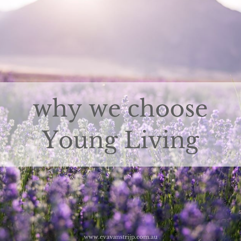 Why we choose Young Living Essential Oils #youngliving #essentialoils