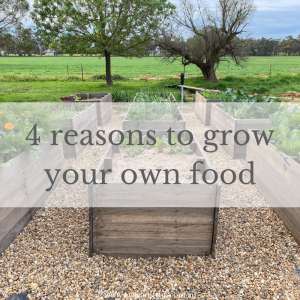 "It is a goal of mine to grow as much as food as possible for my family and I'm often asked why I bother when carrots and potatoes are ""so cheap"".   Here are four reasons for my food-growing obsession."