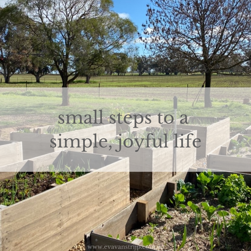 Just as one cloth nappy a day can make a difference, so can many other small changes.  This week, I want to encourage you to pick one of these micro-steps to a simpler, more joyful life.